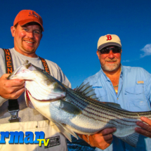 Striped Bass Charters Connecticut JB Sportfishing