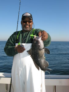 Black Sea Bass Inshore Charters