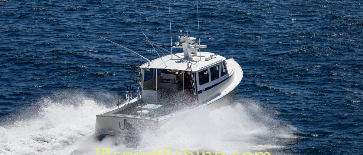 Permalink to: Offshore Charters